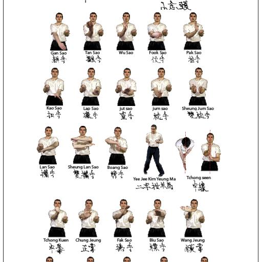 Espace membres accueil france wing chun for Kung fu technique de base pdf